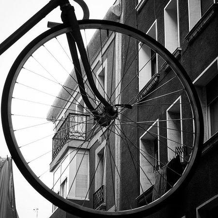 Mirando a través del ciclo. Looking through the cycle . Schauen durch das RadTallerbicibilbao Bici Taller Bilbao Bikes Bikes Getxogram Igersgetxo Getxo Algorta Getxo Getxophoto Fahrrad Baskenland BasqueCountry Euskadi