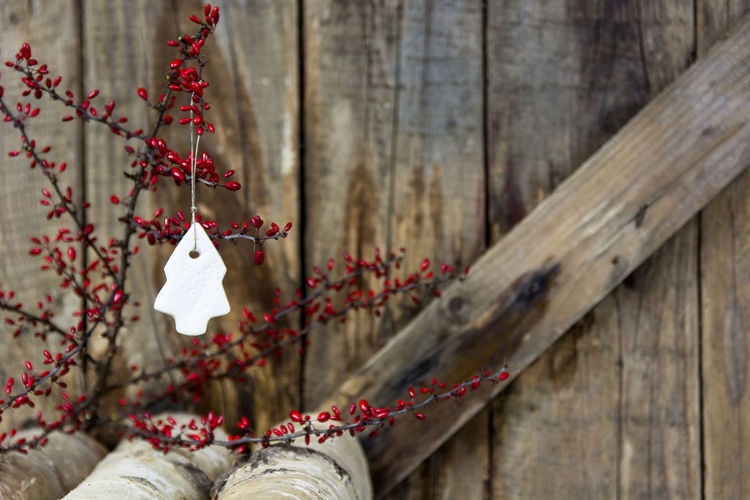 Christmas decor hanging from plant against wooden fence