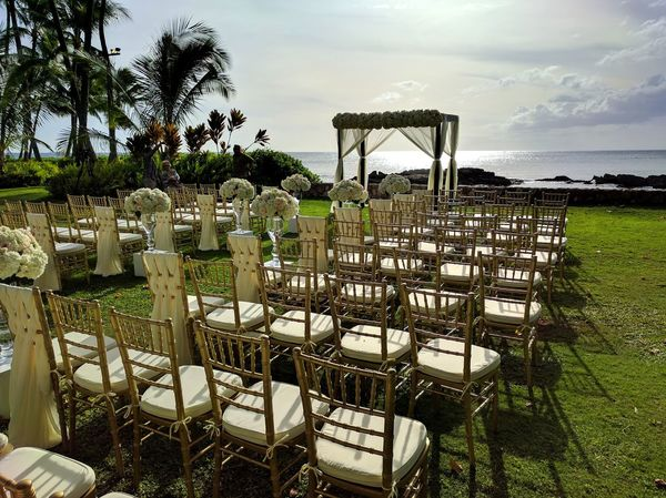 outdoor wedding ceremony venue No People Dramatic Angles EyeEm Gallery Eyeemphotography Outdoor Wedding, Wedding, Flowers, Flower Arrangement, Outdoors Outdoor Wedding Arrangement Coconut Trees Outdoors Special Event Weddings Around The World Chairs And Flowers Tropical Beauty