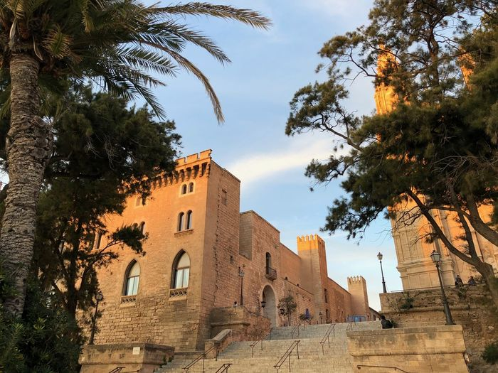 Palma de Mallorca, Spain Evening Light Historical Building Mediterranean  Palma De Mallorca SPAIN Sightseeing Stairs Architecture Building Building Exterior Built Structure City Day Growth History Low Angle View No People Orange Building Outdoors Palm Tree Sky Tree