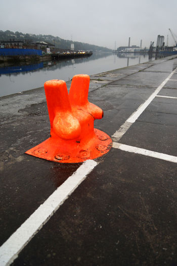 Orange flower on road in city