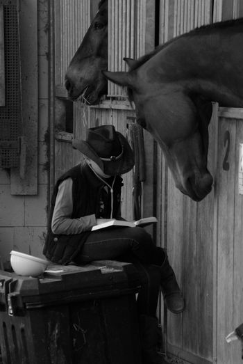Teenage girl reading book while sitting in stable