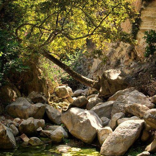 кипр пафос акамас Ущелье авакас приключение панасоник Cyprus Cyprus_on_line Avakas Akamas Adventure Panasonic_g3