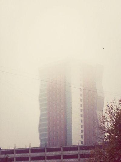 Туманность этого фото, зашкаливает...