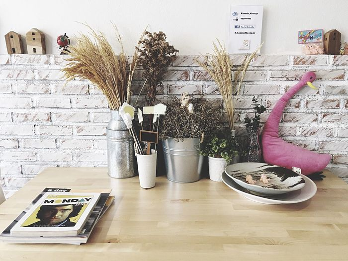 EyeEm Selects Potted Plant Indoors  Plant Vase Architecture Home Interior Table No People Built Structure Growth Home Showcase Interior Day Working Chill