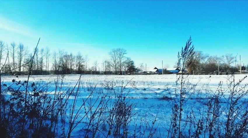 Зимняя красота? First Eyeem Photo