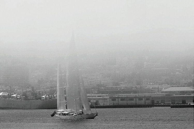 San Francisco Foggy Morning Fog Fog City Sailboat Sailing Blackandwhite Photography Foggy Day Foggyday Sailing Boat