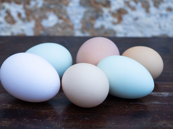 Close-up of eggs in row on table