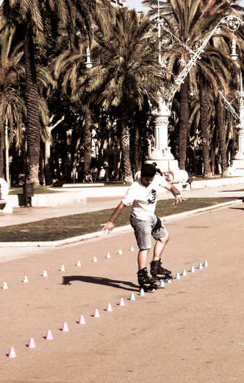 Performing skillful slalom action on skates is surely an eyecatcher for women - does it work? ;-) Alley Carefree Cup Cups Fabulous Inline Skating Leisure Activity Men Palm Palm Trees Rear View Road Shirt Showing Off Skating Skills  Slalom Sport Sport In The City Street Sunny Training Warm Young Man Showcase: February