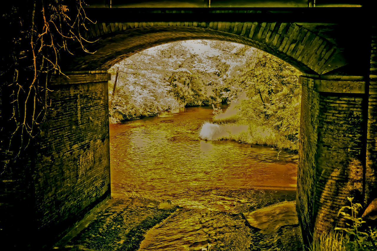 water, architecture, arch, nature, day, bridge, built structure, connection, tree, bridge - man made structure, one person, plant, outdoors, tranquility, river, real people, reflection, tunnel, arch bridge