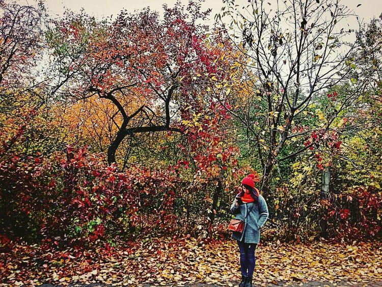 Picturing Individuality Ternopil Samsung Galaxy A3 EyeEm Best Shots Autumn Leaf Park Trees EyeEm Ukraine Nature EyeEm Nature Lover