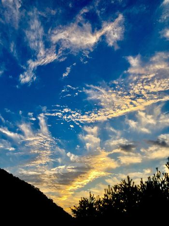 Subject : A Beautiful Sunset Seen from the Inside of the Car on the Way Back to Kure. Beauty In Nature Silhouette Scenics Nature Sky Tree Cloud - Sky Tranquil Scene Tranquility No People Low Angle View Sunset Idyllic Blue Outdoors Day . Taken in Higashi-Hiroshima , Japan on Sep. 29, 2017 ( Submitted on Oct. 8, 2017 )