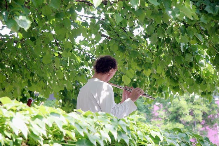 Lifestyle Spirituality Tranquility Day Flute Flute Player Growth Harmony Leisure Activity Nature One Person Outdoors Plant Playing The Flute Rear View Softness Summer Tree
