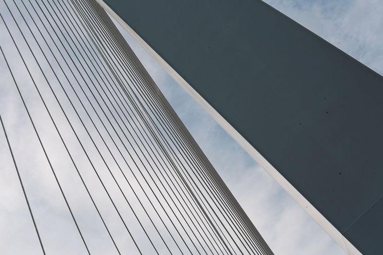 Low angle view of erasmus bridge