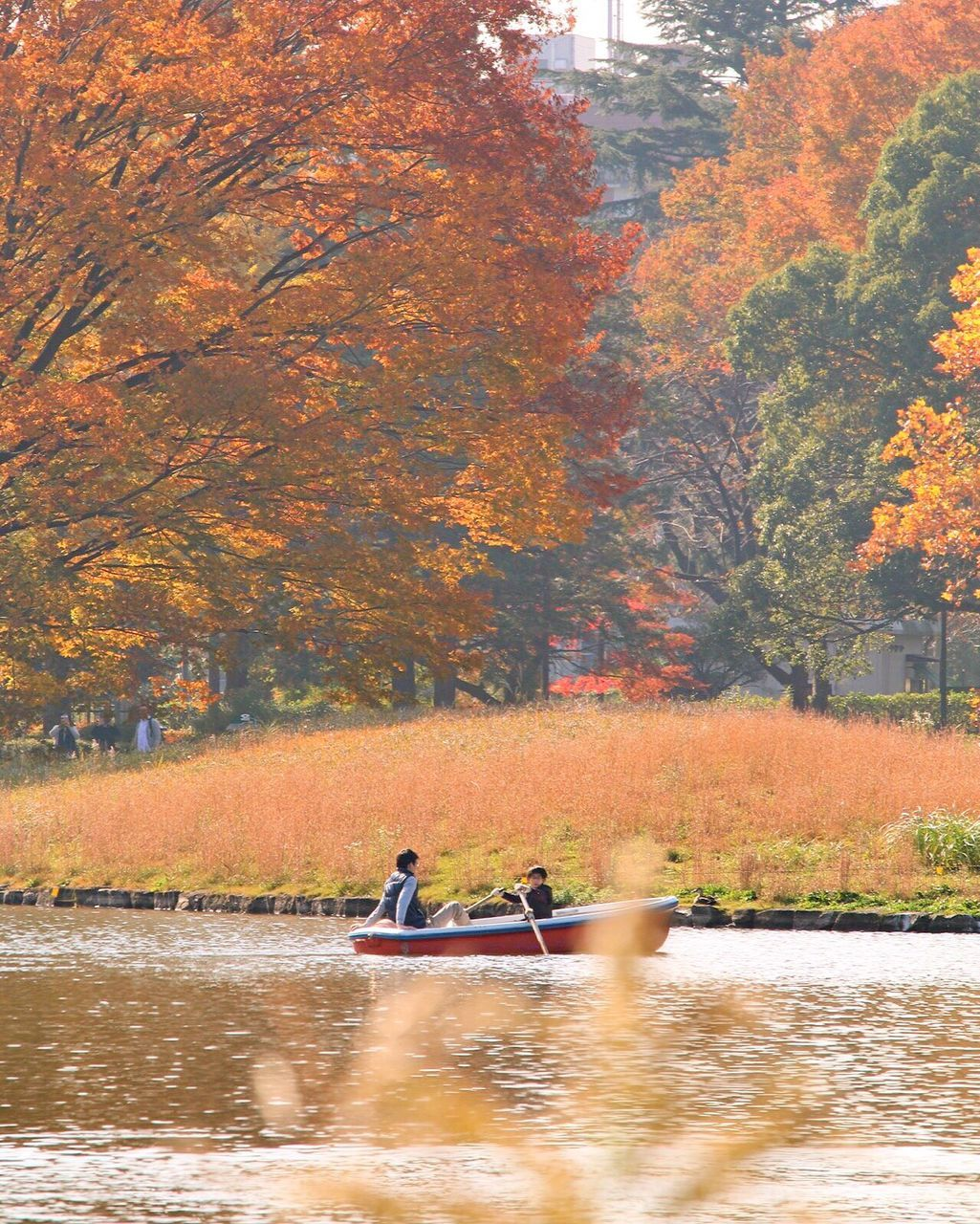 autumn, tree, nature, water, forest, lake, kayak, beauty in nature, change, scenics, outdoors, leaf, two people, adult, day, leisure activity, oar, sitting, sport, nautical vessel, rowing, people, men, adults only, golf course, sportsman, only men
