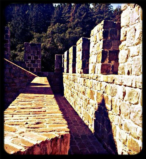 Castillo di Amorosa Pathways ☺️