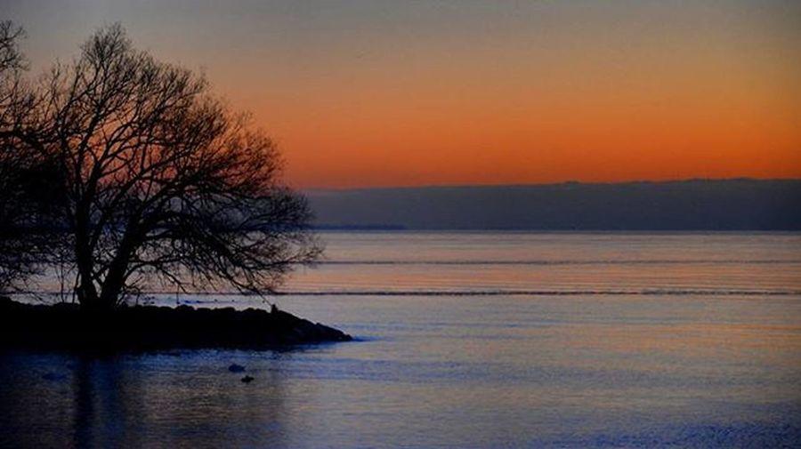 Cold and Beautiful. Sunrise Sun Winter Orange Lakeontario  Outdoorphotography Nature Nikonphotography Prophotography Trees Colorful Mississauga Igsunrisesunset Rrhurstphotography Artsburlington Outdoorcanada Latowphotographersguild