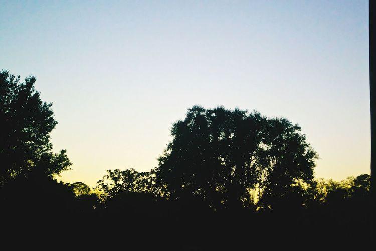 Sun dies down &