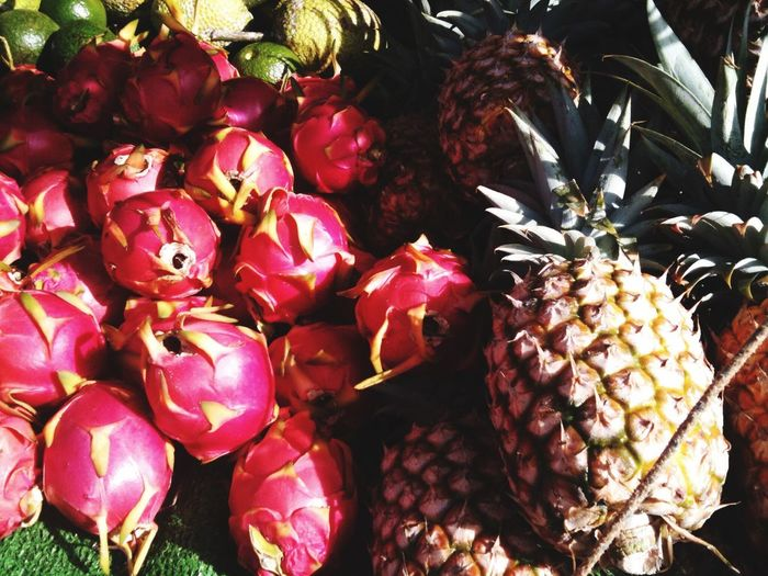 Hawaii Fruit Colorful Pinapple