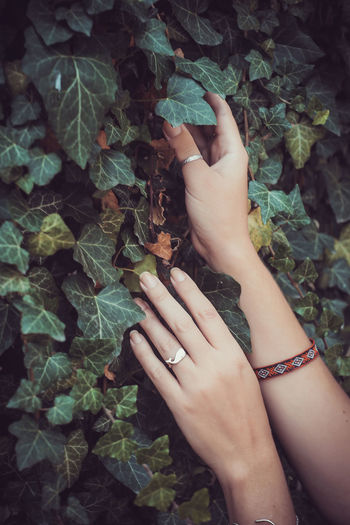 Close-up of woman hand with leaves