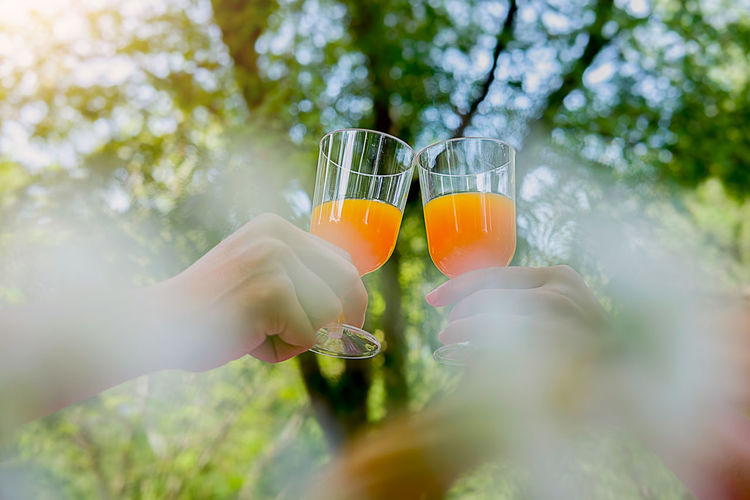 Cropped Hands Of Women Toasting Juice Against Tree