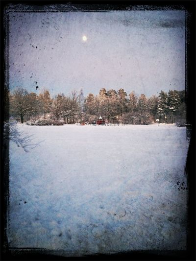 #frosty #morning