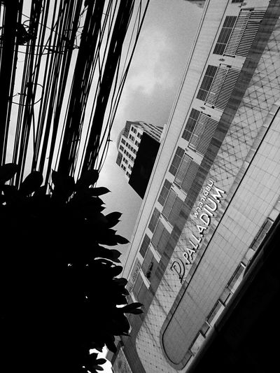 a wired city - Bangkok 2017 Architecture Urban Landscape Street Streetphotography Snapshots Of Life Sony Xperia Xperia Z5 Urbanphotography City Street Photography Lensculturestreets Street Life Dailylife Lensculture Dailyphoto Urban Exploration EyeEm Thailand Black And White Collection  EyeEm Bnw Streetphotography_bw Bw_collection Black & White Black And White Bw_ Collection Black And White Collection