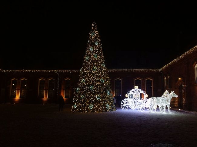 People Cinderella Snow Beautiful View Christmas Lights Magical Light Holidays Nightphotography Christmas Christmas Tree Christmas Decoration Illuminated Night Celebration Tree Topper Christmas Lights Tradition Christmas Ornament Holiday - Event Winter Snow Architecture No People Vacations Outdoors Tree
