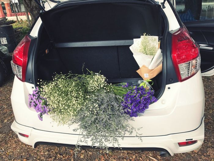 Beuquetofflowers Car Mode Of Transport Transportation Land Vehicle Flower Outdoors No People Day Close-up Freshness Nature Police Car Bouquet in car