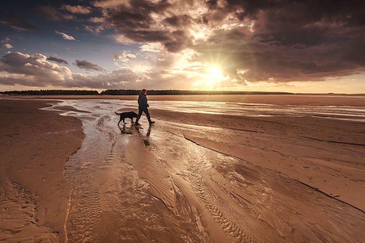 Best Friends | A dog is not a pet. It is your family, your pack. Love it accordingly. ❤🐶 Beach Outdoors Sunset Sky Sunlight Full Length Sandy Beach Beach Dog Walk Walking The Dog Norfolk Holkham Beach Cloud - Sky Togetherness Domestic Animals Mansbestfriend Beach Patterns Sunshine By The Sea Beauty In Nature Sky And Clouds Skyporn Sky_collection Beachphotography Beach Life Miles Away The Great Outdoors - 2017 EyeEm Awards