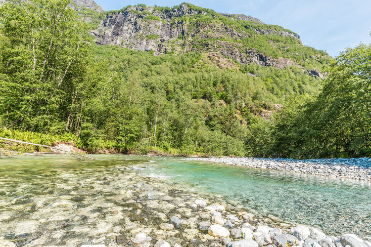 Beach Beauty In Nature Canyon Day Forest Landscape Mountain Nature No People Outdoors River Rock - Object Scenics Sky Stalheim Stalheimsklevia Tranquil Scene Tranquility Tree Water Waterfront