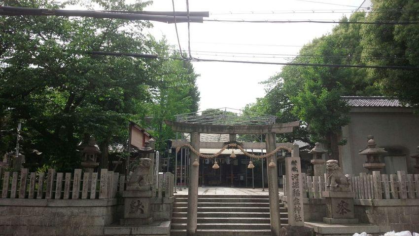寺田町 Shrine Taking Photos Osaka Japan Streetphotography