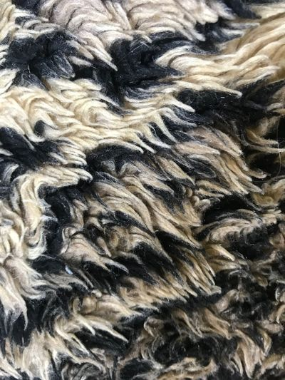 Full Frame Backgrounds No People Close-up Pattern Textile Textured  Indoors  Black Color Wool Extreme Close-up Animal Hair Animal Abstract Day Animal Themes Creativity High Angle View Food