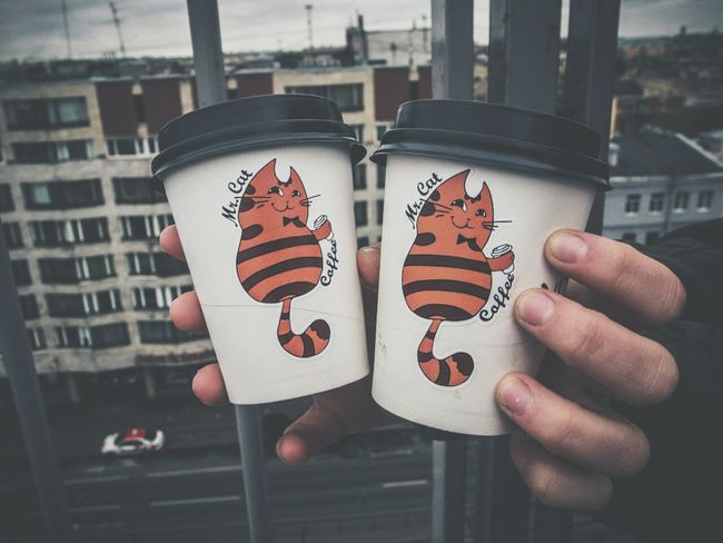 Coffee Urban Retro City Cats Relaxing крыша
