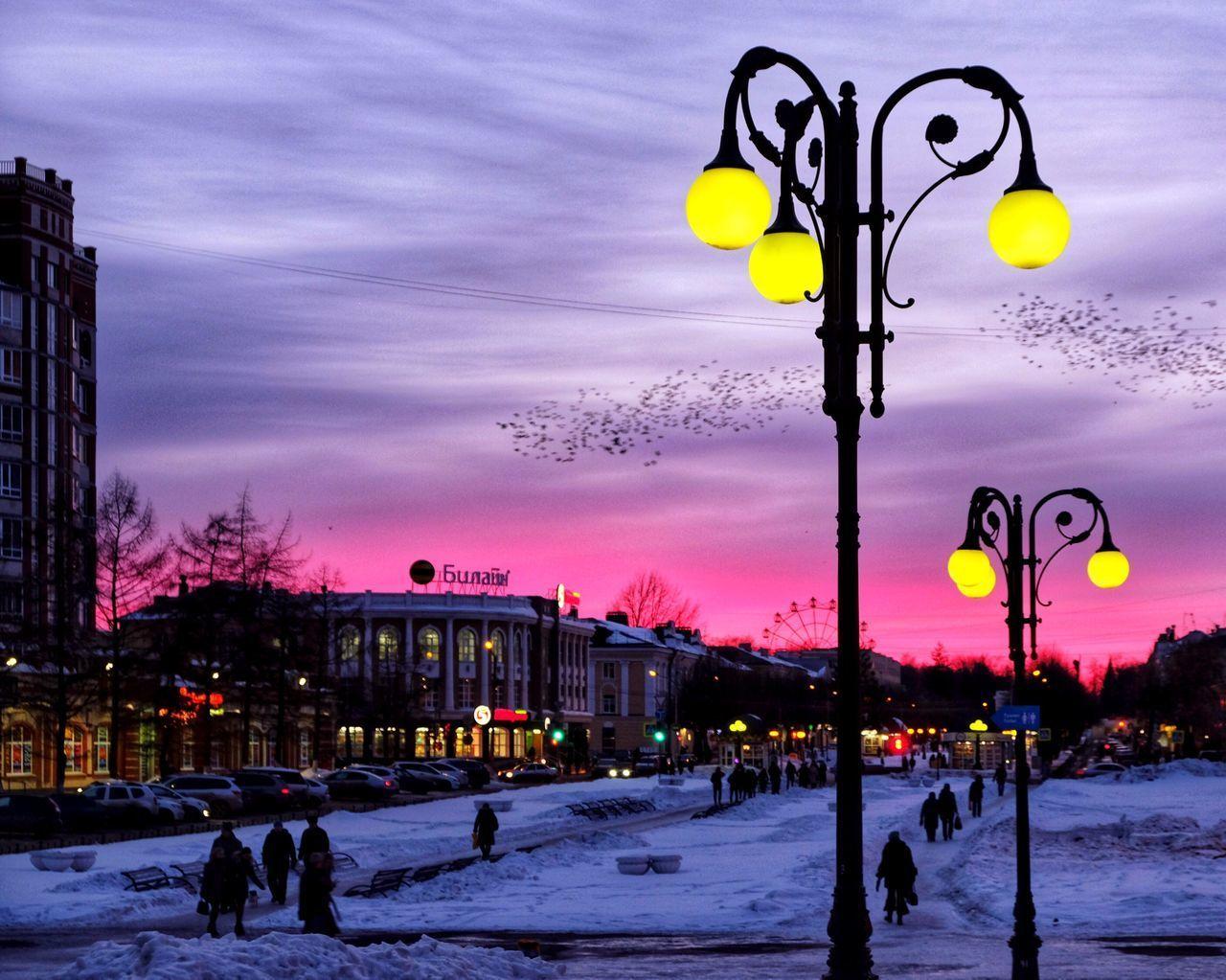 STREET LIGHTS IN WINTER