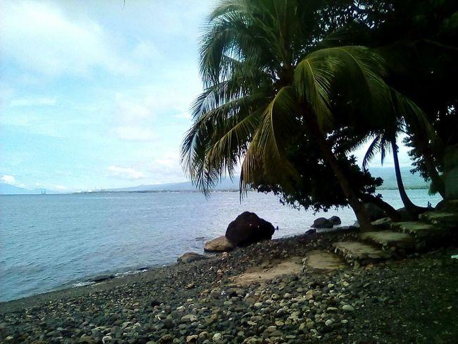 Sea Beach Nature Horizon Over Water Sky Scenics Day