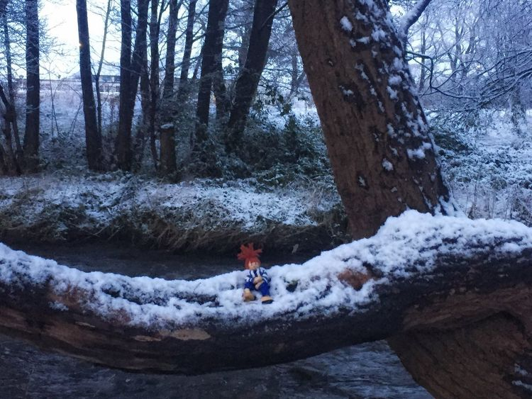 """Just taking a rest...... playing in the snow is exhausting "" Fun Playing Messing Around Just For Fun Tree Day Outdoors Season  Snow Winter Childhood Wooden Toy Doll Weather Just Chillin' Adventure Children Only Cold Temperature Bare Tree Beauty In Nature Today In Scotland"