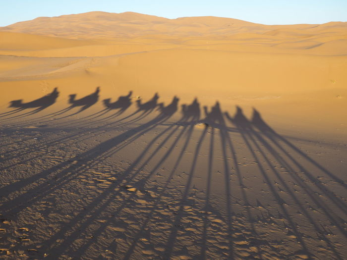 Arid Climate Beauty In Nature Climate Day Desert Environment Focus On Shadow Group Of People Land Landscape Nature Non-urban Scene Outdoors Real People Remote Riding Sand Sand Dune Scenics - Nature Sky Tranquil Scene Tranquility Travel