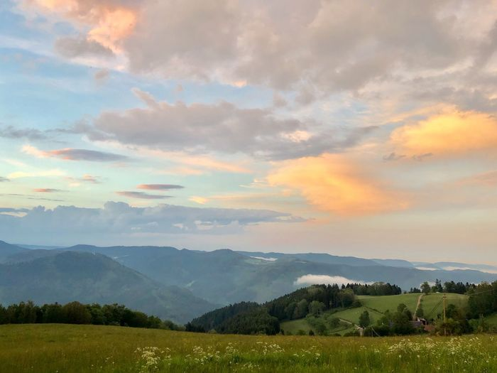 Korbmacher Mosenmättle Richtung Halbmeil Sky Beauty In Nature Scenics - Nature Cloud - Sky Tranquility Landscape Environment Nature Tree Mountain No People Green Color Field Land