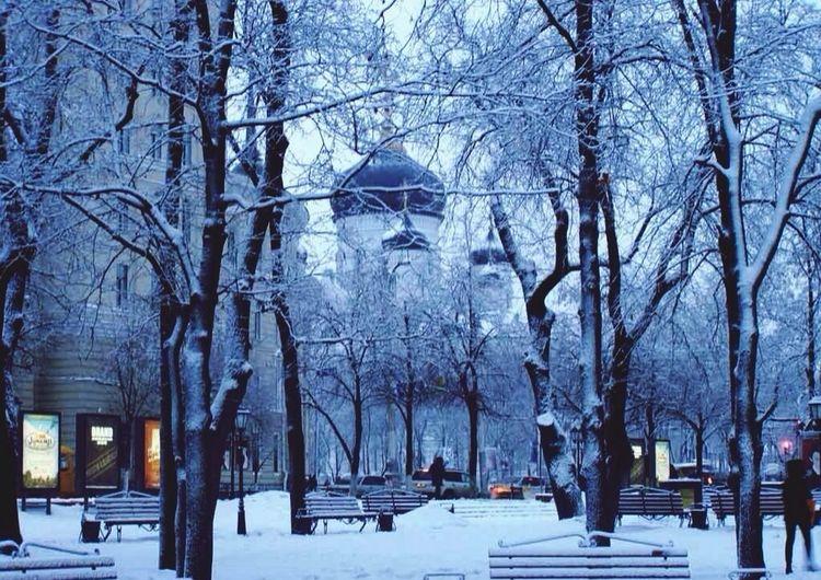 Voronezh center
