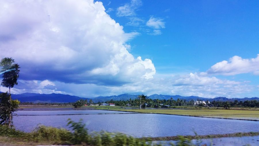 Landscapes With WhiteWall Hello World Here Belongs To Me EyeEm Nature Lover The Week On Eyem Nature Photography Landscape_photography Simply Beautiful Rural Life Things I Like: Beauty Of Nature, its Endless Wonders. Blue Wave Ricefield View Kiomi Collection Showcase April The Great Outdoors - 2016 EyeEm Awards