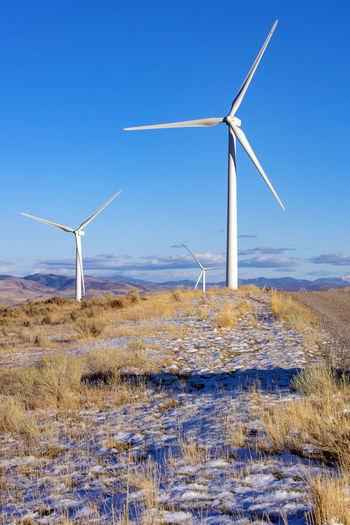 Wind turbines on field against clear blue sky