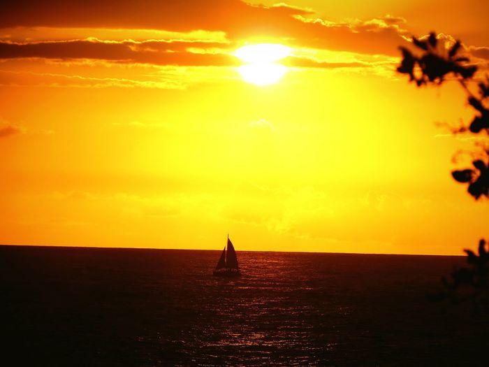 Beach Photography Puerto Rico Nature Pretty♡ Photo♡ Beautiful Fotografia Colorful Beautiful Nature Sun ☀ Sunset Rincon Sea Feel The Journey Hidden Gems
