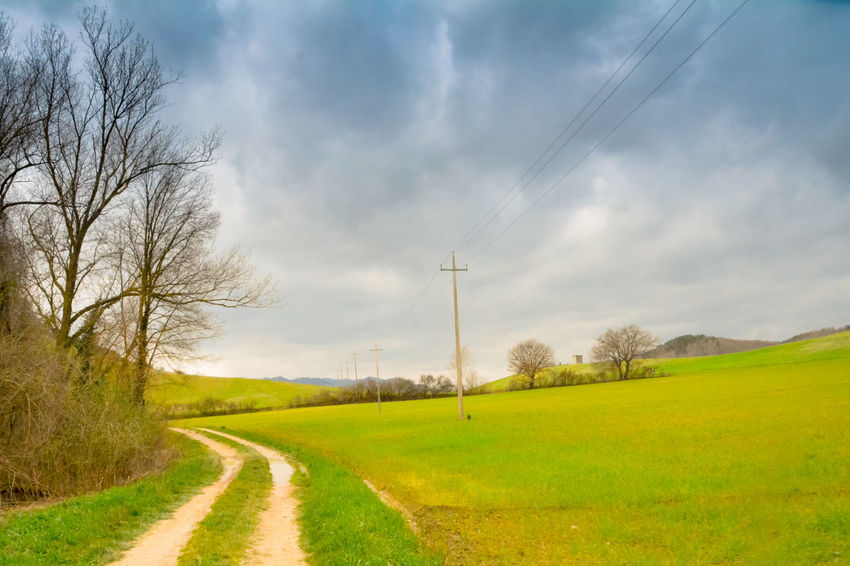 Sky Landscape Grass Road Plant Cloud - Sky Environment Field Tree Land Electricity  Electricity Pylon Technology Nature Cable Rural Scene No People Tranquility Scenics - Nature Beauty In Nature The Way Forward Power Supply Outdoors Telephone Line