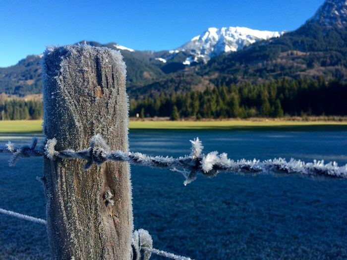 Showcase: December Oberstdorf & Umgebung Allgäu Langenwang Cold Cold Days Ice Crystals Check This Out Mountains My Winter Favorites Flowers, Nature And Beauty EyeEm Nature Lover Allgäuer Alpen Allgaeu Check This Out! Home Is Where The Art Is