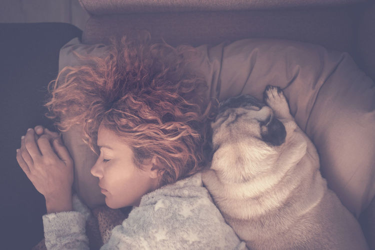 Top view of beautiful woman sleep with her best friend affective dog pug - love and friendship concept with person and animals - protection and forever together friends at home for life Furniture Indoors  Childhood Domestic Pets Child Headshot Eyes Closed  One Animal Relaxation Mammal Sleeping Domestic Animals Lying Down Dog Positive Emotion Innocence Pet Owner Protection Aerial View Pug Young Woman Curly Hair Caucasian Pillow