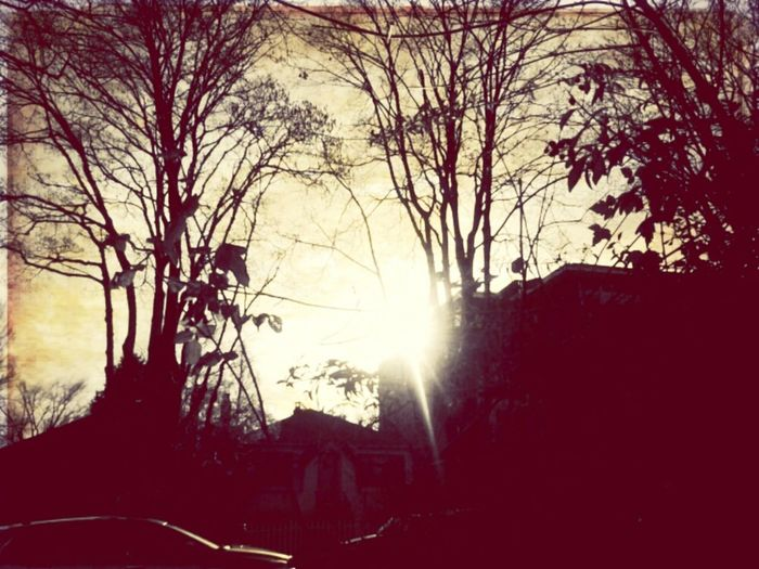 "Andrography Phoneography Lomography Shootermag VintageCamera ""False Hope"""