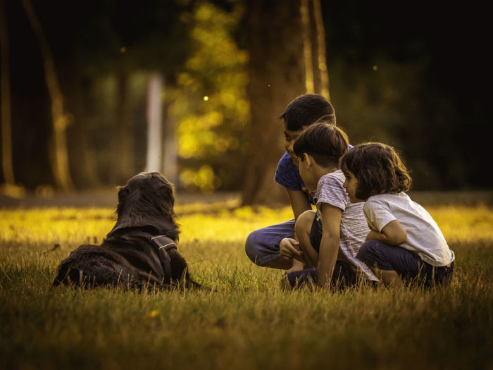 Group Of People Child Grass Childhood Togetherness Plant Men Females Males  Women Sitting Family Boys Selective Focus Rear View Girls Nature Land Offspring Sister Outdoors Son