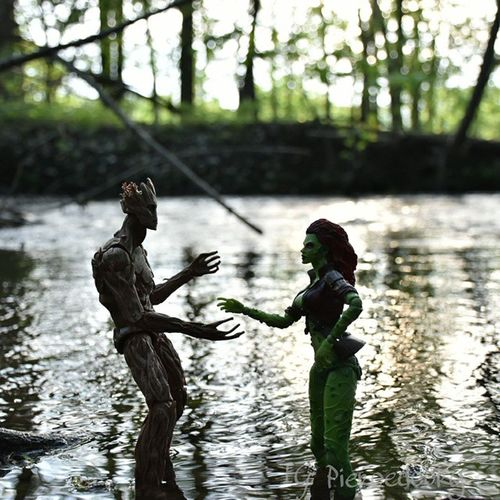 """You're magnificent! Where have you come from?"" ""I AM GOOT...."" ""Yes you are!"" DC Marvel _tyton_ Groot Poisonivy Tamd_crossovers"