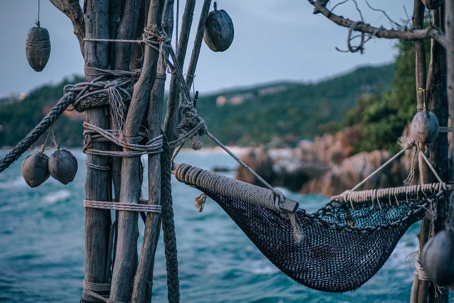 Hammock hanging between the dry tree stems and dry coconut are hanging for decorations. The background is the sea and a tropical green island. Chill-Out Decor Holiday Nature Rope Seashore Silhouette Tree Twilight Vacations Vivid Beach Chill Decorations Evening Hammock Island Knotted Wood Sea Seascape Sky Sun Sunset Swing Tropical